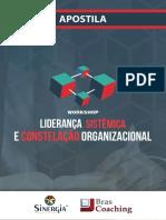 Apostila - Liderança Sistemica simone bernadino.pdf