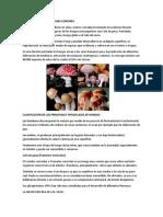TIPOS DE HONGOS MAS COMUNES.docx