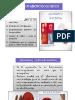 Clase 3a- Métodos microbiologicos 2017.pdf