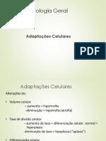 Adaptações-Celulares.pptx
