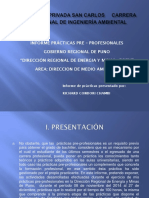 POWER POINT PRACTICAS PREPROFESIONALES EN DREM