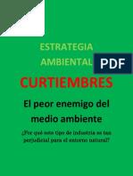 ESTRATEGIA AMBIENTAL