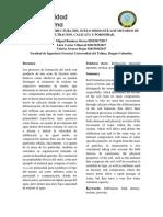 2do Informe de suelos.pdf