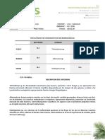 Resultados 037-2020 Cultivo Bonsai Arce Palmatum