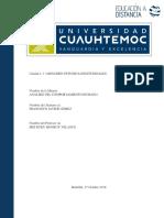 FranciscoJavierGomez1.3-resumen estudios longitudunales