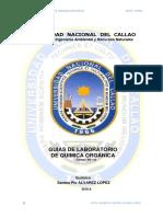 unac-lab-org-GUIA (1)