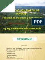 -clase 2 ecosistema RECTIFICADO -2018.pptx