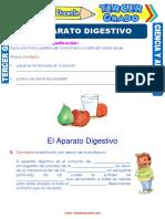 El-Aparato-Digestivo-para-Tercer-Grado-de-Primaria