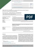 Aplicación de la ecografía en la cateterización venosa central; lugares y técnicas del procedimiento.