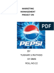 Marketing Management Project On