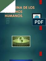 NATURALEZA Y FUNDAMENTO.pptx