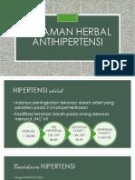TANAMAN HERBAL ANTIHIPERTENSI