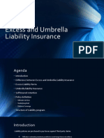 Excess and Umbrella Liability Insurance