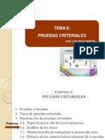 30683697-T8+-+PRUEBAS+CRITERIALES