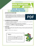 El-Reino-Monera-Cianobacterias-para-Segundo-de-Secundaria