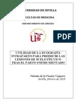 TESIS DOCTORAL_PALOMA DE LA FUENTE VAQUERO_MODIFICACIONES