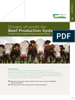 Beef-Manual-Section2.pdf