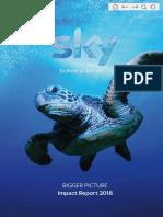 Sky_Bigger_Picture_Impact_Report_2018(1).pdf