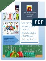 INFORME 2- VELOCIDAD Y MEANISMO DE LAS REACCIONES QUÍMICAS