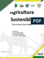 Libro_SOMAS (1).pdf