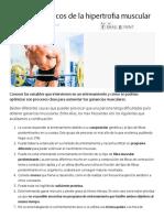Principios básicos de la hipertrofia muscular