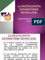 laencefalopataespongiformebovinaeeb-130129003954-phpapp02