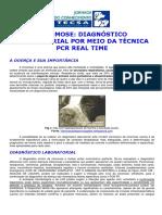 CINOMOSE DIAGNOSTICO LABORATORIAL POR MEIO DA TECNICA PCR REAL TIME