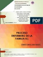 DIAPOS PROCESO (PAE).pptx