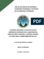 Tesis Med Vet Julia Cordova.pdf