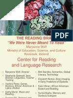 reading brain (disleksia) iceland-lecture827final.pdf