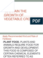 Maintain the Growth of Vegetable Crops