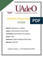 Análisis Organizacional.docx