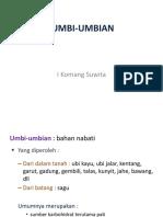 3. Umbi-1