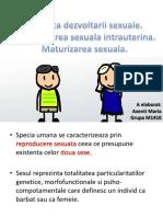 IP Universitatea de Stat de Medicina si Farmacie
