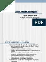 84843_o Papel Do Gerente de Projetos-2010
