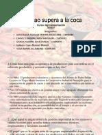 El cacao supera a la coca - historias de exito.pptx