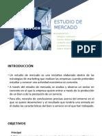 diaposs estudio de mercado.pptx