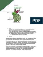 Alimentação coelhos(Letícia).docx