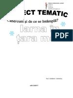 proiect_tematic_iarna_20172018