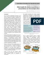 correc_modelo_relatorio_celulas
