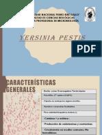 enfermedades zoonoticas peste bubonica