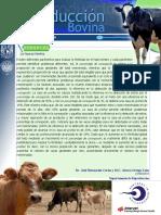 Sperm_morphology_and_fertility_of_progen.pdf