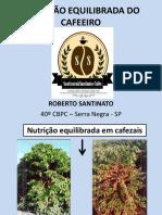 Nutrição equilibrada do cafeeiro
