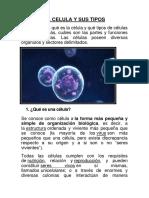 LA CELULA Y SUS TIPOS.docx