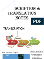 Transcription & Translation Notes (1) (1).pdf