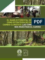 El manejo forestal sostenible como estrategia de combate al cambio climático