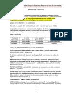Proyecto, su formulacion y su evaluacion-1 SIN EDITAR