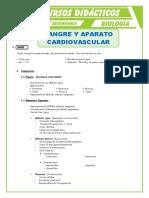 La-Sangre-y-Aparato-Cardiovascular-para-Quinto-de-Secundaria
