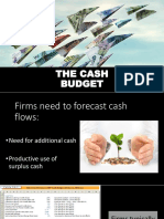 Capital-Management-Cash-Budget-Report