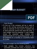 Cash budget.pptx